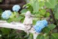 6月の誕生石の宝石言葉・神話・伝説