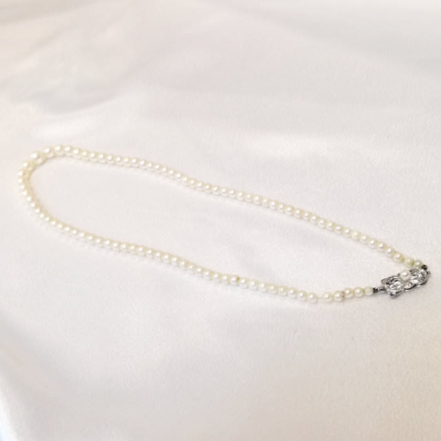 S310041-necklace-sv-before.jpg