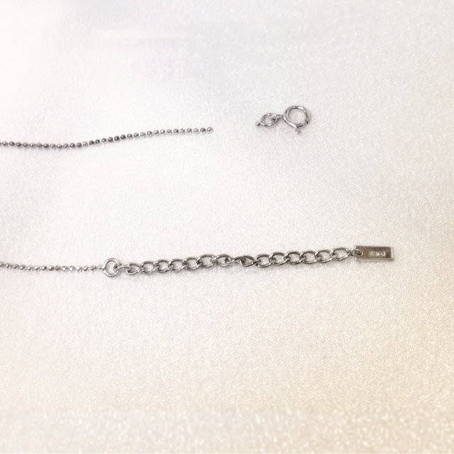 S310060-necklace-sv-before.jpg