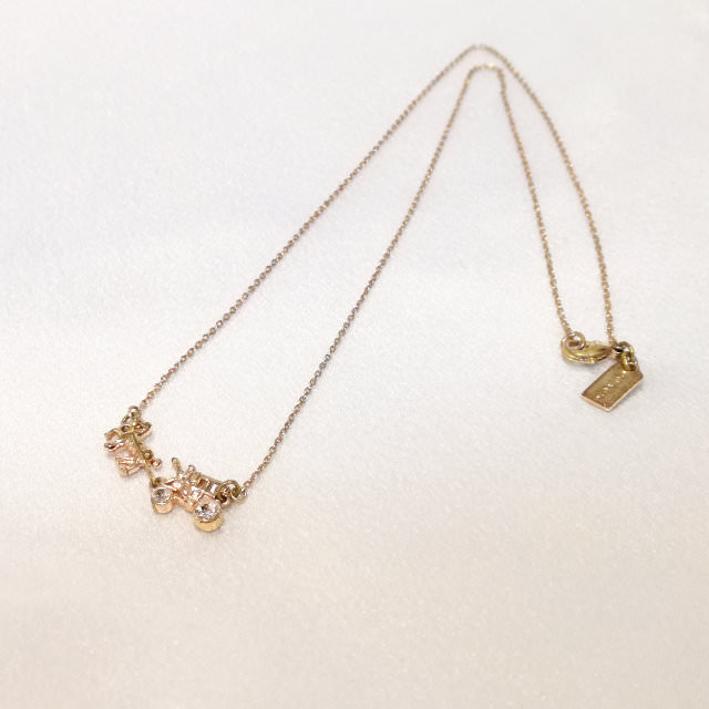 S310117-necklace-before.jpg