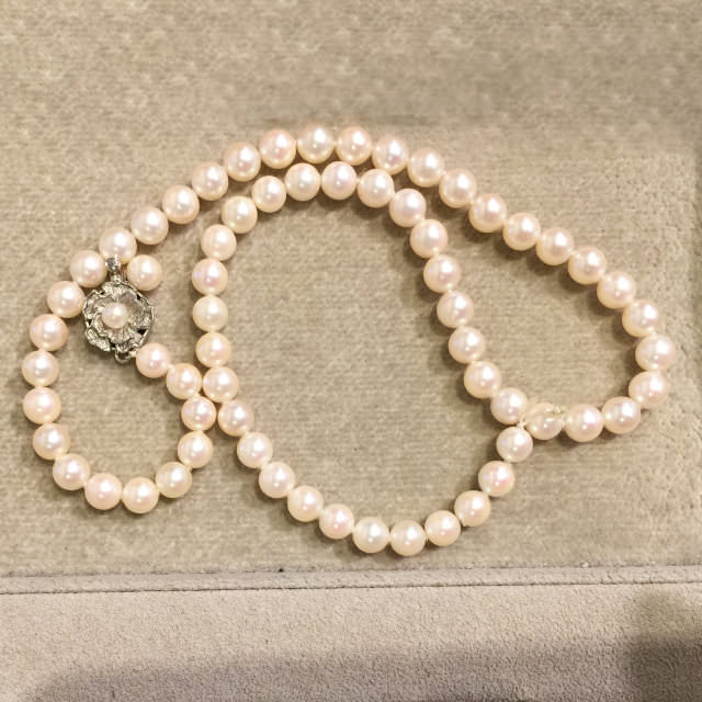 S310133-necklace-sv-before.jpg