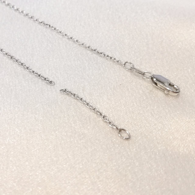 S310181-necklace-sv-before.jpg