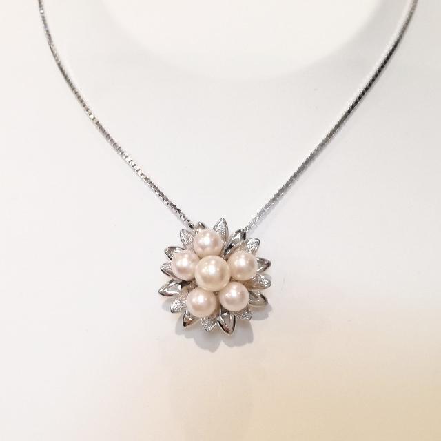 R310157-necklace-sv-after.jpg