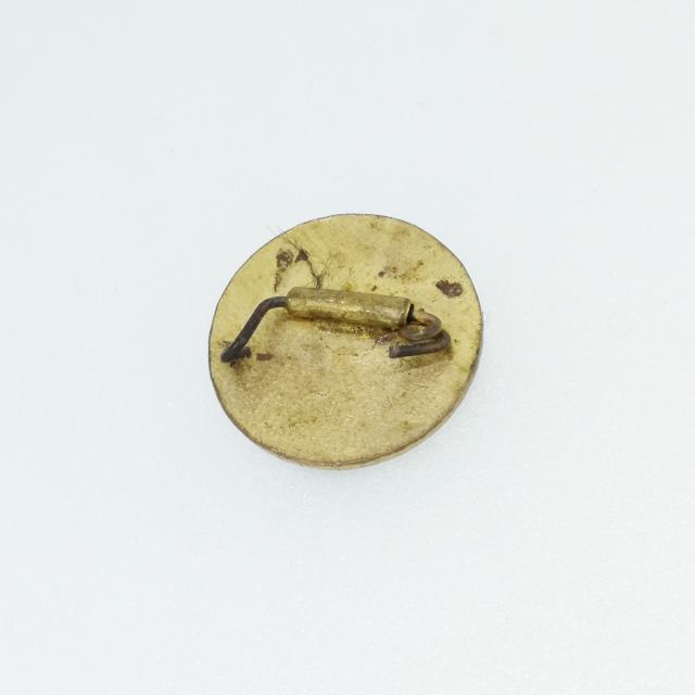 S330065-brooch-before.jpg